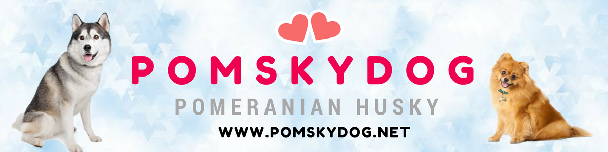 Welcome to PomskyDog